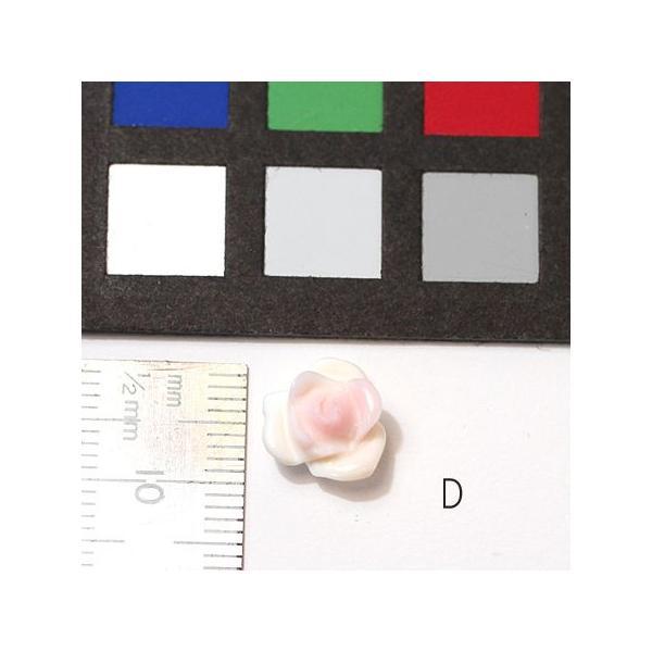 コンクシェルのバラ 直径約10mm 材料 バラ売り1個/ポスト投函対応送料270円|wizem|05