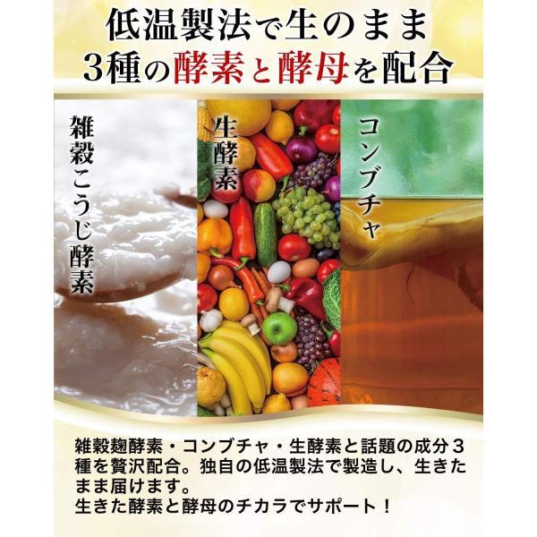 腸活革命 菌と酵素の新習慣 サプリメント 酪酸菌 ビフィズス菌 31日分 wlo 05