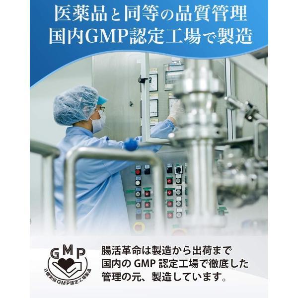 腸活革命 菌と酵素の新習慣 サプリメント 酪酸菌 ビフィズス菌 31日分 wlo 06