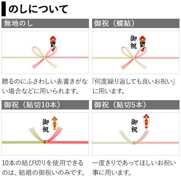 プレゼント ギフト 田手商店 干物セット 4種 wochigochi 06