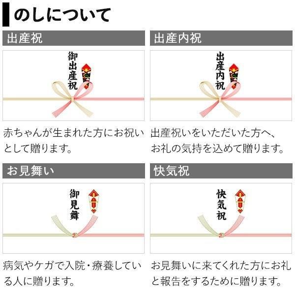 プレゼント ギフト 田手商店 干物セット 4種 wochigochi 07