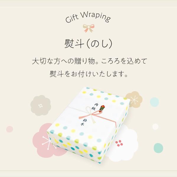 プレゼント ギフト 田手商店 干物セット 4種 wochigochi 02