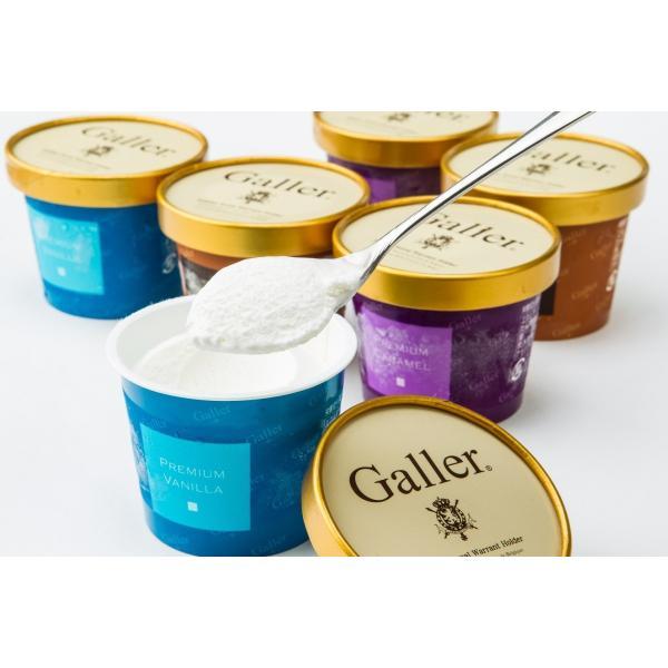 年始ギフト アイスクリーム ギフトセット ガレープレミアム 12個詰め合わせ お誕生日祝い 出産内祝い 送料無料 プレゼント|wochigochi|02