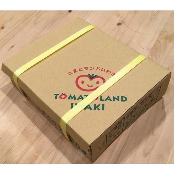 ミニトマト 贈答 みどりちゃん 1kg箱 ワンダーファーム 産地直送 お取り寄せ野菜|wonderfarm|03