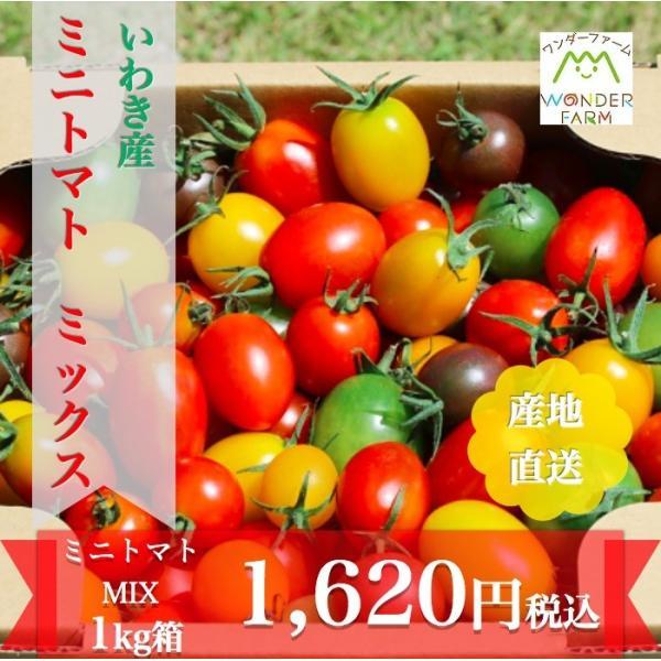 ミニトマト 贈答 ミニトマトミックス1kg詰め(トマトの宝石箱) お取り寄せ野菜 ワンダーファーム