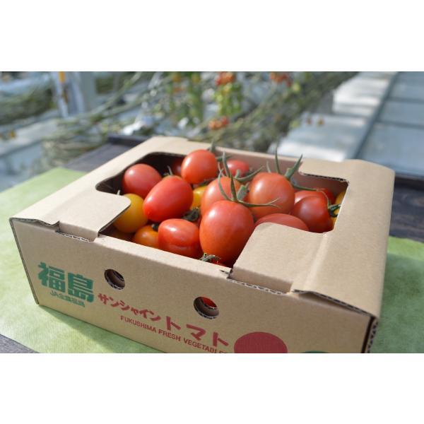 ミニトマト 贈答 ミニトマトミックス1kg詰め(トマトの宝石箱) お取り寄せ野菜 ワンダーファーム|wonderfarm|03