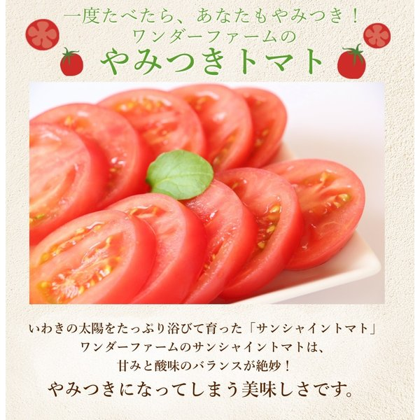 サンシャイントマト詰め合わせ3kg (大玉・中玉・ミニ) お取り寄せ野菜 ワンダーファーム|wonderfarm|03