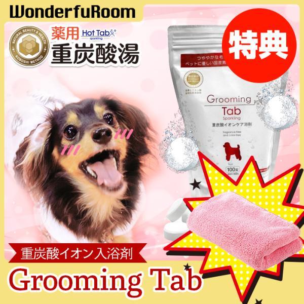 犬 猫 ペット用重炭酸入浴剤 炭酸泉 臭い 被毛 皮膚ケア グルーミングタブ100錠 wonderfuroom
