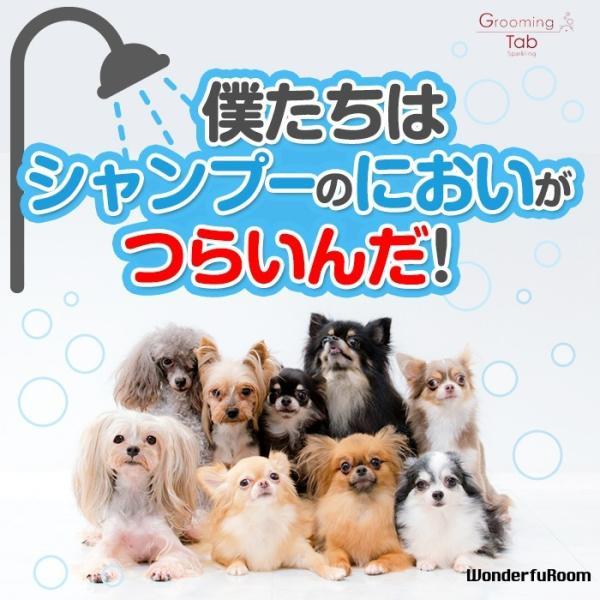 犬 猫 ペット用重炭酸入浴剤 炭酸泉 臭い 被毛 皮膚ケア グルーミングタブ10錠 メール便 送料無料|wonderfuroom|02