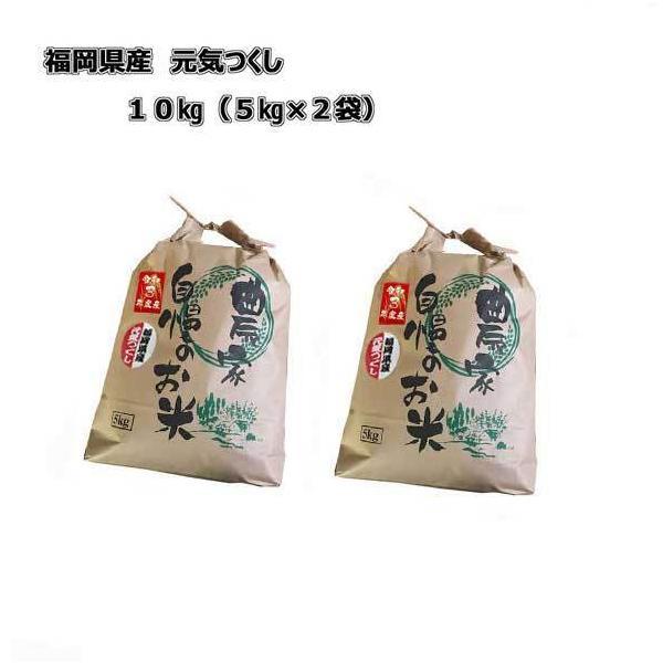 予約 新米 令和3年産 福岡県産 元気つくし 10kg(5kg×2) 農家直送 10月下旬発送予定