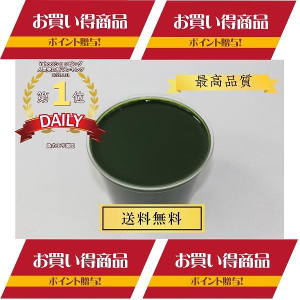 売れてます グリーンウォータークロレラ水500ml最高級スーパー生クロレラ使用めだかメダカミジンコ餌エサ