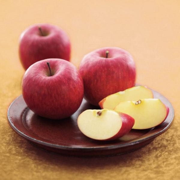山形県産 訳あり お買い得りんご10kg 山形 林檎 りんご 訳あり 10kg 送料無料