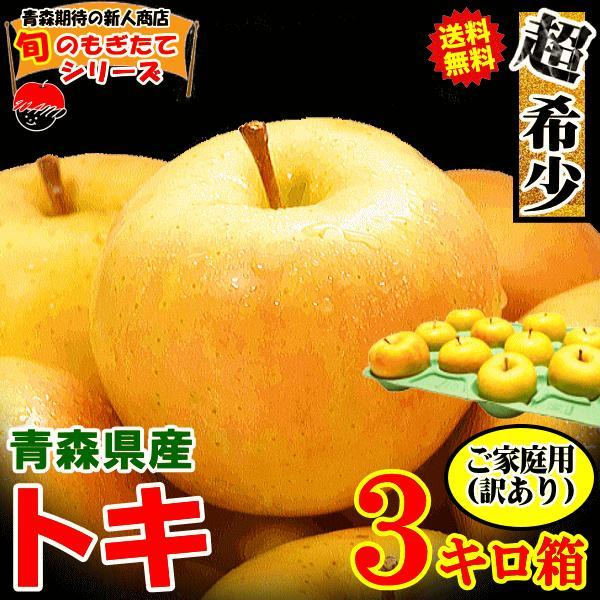 あすつく 青森りんご 3kg箱 サンふじ ご家庭用 訳あり【クール便対応】鮮度抜群 青森 リンゴ 3キロ箱 大小様々