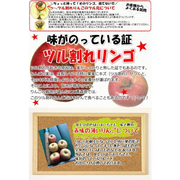 【クール便込!!出荷中】りんご ふじ 10kg箱 訳あり 鮮度抜群 CA貯蔵 青森 リンゴ 10キロ箱 大小様々 world-wand 13
