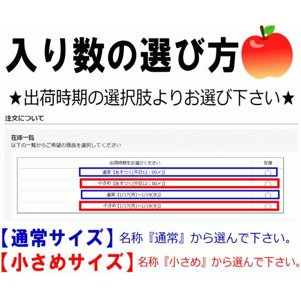 【クール便込!!出荷中】りんご ふじ 10kg箱 訳あり 鮮度抜群 CA貯蔵 青森 リンゴ 10キロ箱 大小様々 world-wand 06