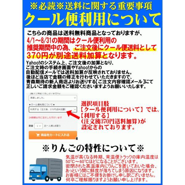 【クール便込!!出荷中】りんご ふじ 10kg箱 訳あり 鮮度抜群 CA貯蔵 青森 リンゴ 10キロ箱 大小様々 world-wand 07