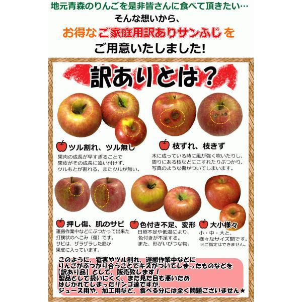 【クール便込!!出荷中】りんご ふじ 10kg箱 訳あり 鮮度抜群 CA貯蔵 青森 リンゴ 10キロ箱 大小様々 world-wand 08