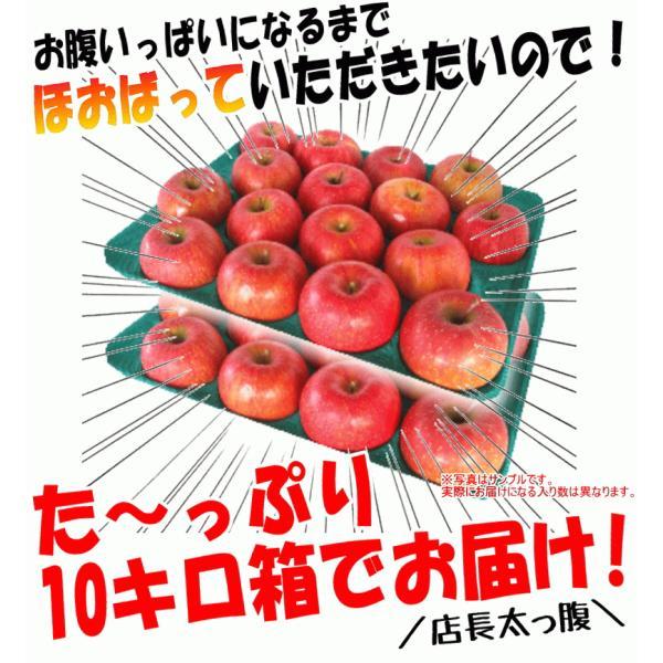 【クール便込!!出荷中】りんご ふじ 10kg箱 訳あり 鮮度抜群 CA貯蔵 青森 リンゴ 10キロ箱 大小様々 world-wand 10