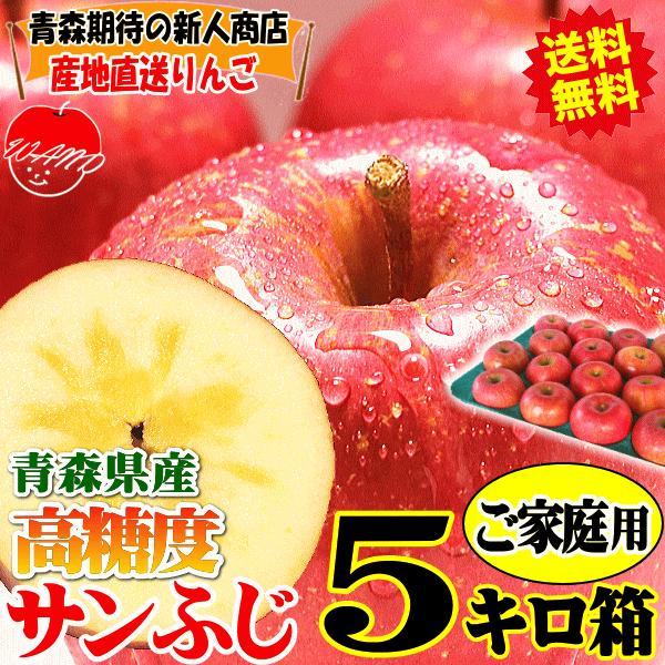 【予約】送料無料 りんご 5kg箱 高糖度サンふじ ご家庭用 訳ありリンゴ 鮮度抜群 青森 リンゴ 5キロ箱