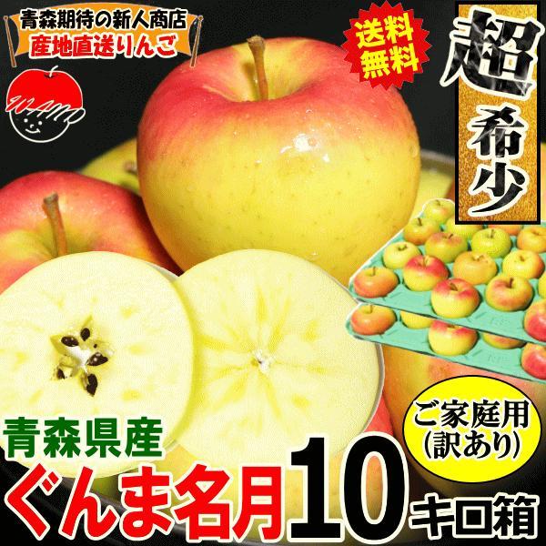 【予約】送料無料 りんご 10kg箱 ぐんま名月 ご家庭用 訳ありリンゴ 鮮度抜群 青森 リンゴ 10キロ箱