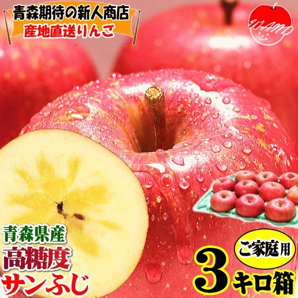 りんご 3kg箱 訳あり 送料無料 青森 リンゴ 3キロ箱 サンふじ 大小様々|world-wand