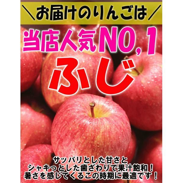 りんご 3kg箱 訳あり 送料無料 青森 リンゴ 3キロ箱 サンふじ 大小様々|world-wand|02