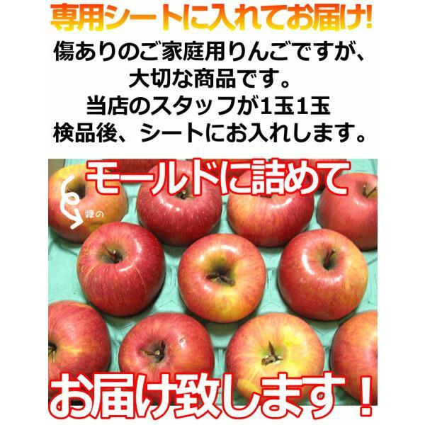 りんご 3kg箱 訳あり 送料無料 青森 リンゴ 3キロ箱 サンふじ 大小様々|world-wand|11