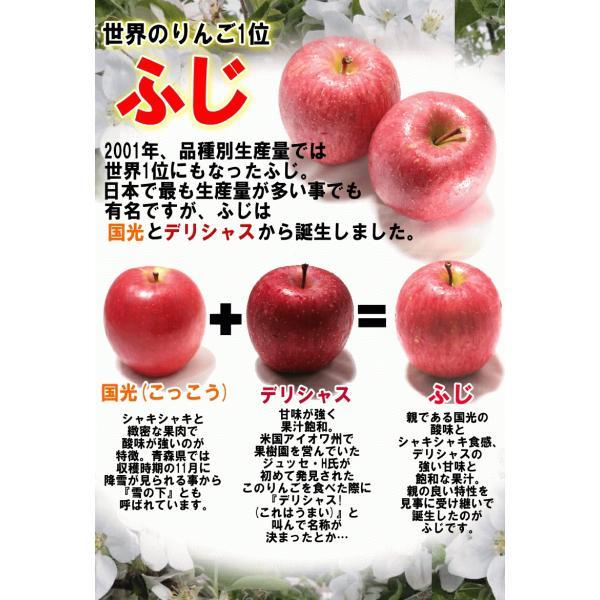りんご 3kg箱 訳あり 送料無料 青森 リンゴ 3キロ箱 サンふじ 大小様々|world-wand|03
