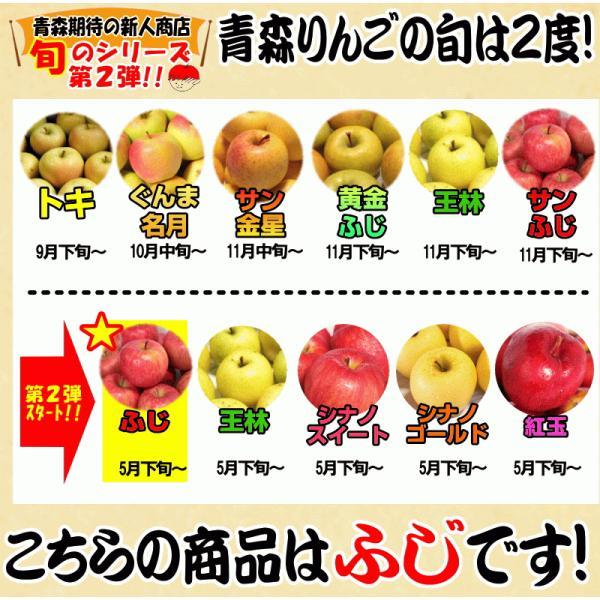 りんご 3kg箱 訳あり 送料無料 青森 リンゴ 3キロ箱 サンふじ 大小様々|world-wand|04