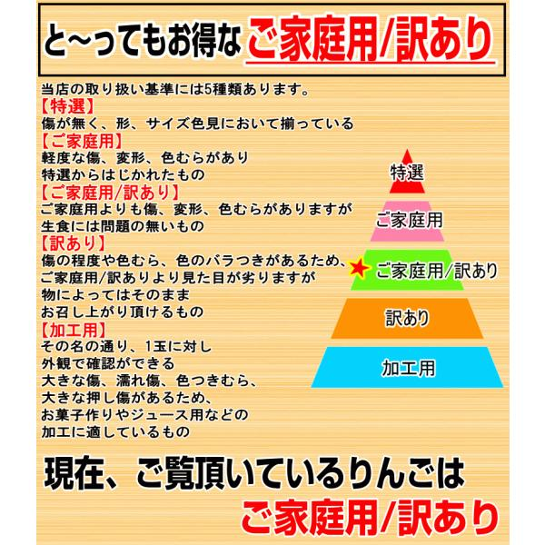 りんご 3kg箱 訳あり 送料無料 青森 リンゴ 3キロ箱 サンふじ 大小様々|world-wand|09