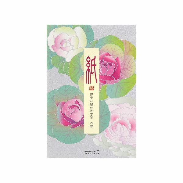 レター midori ミドリ「紙」シリーズ 冬レター はがき箋573 シルク 葉牡丹柄 88573006