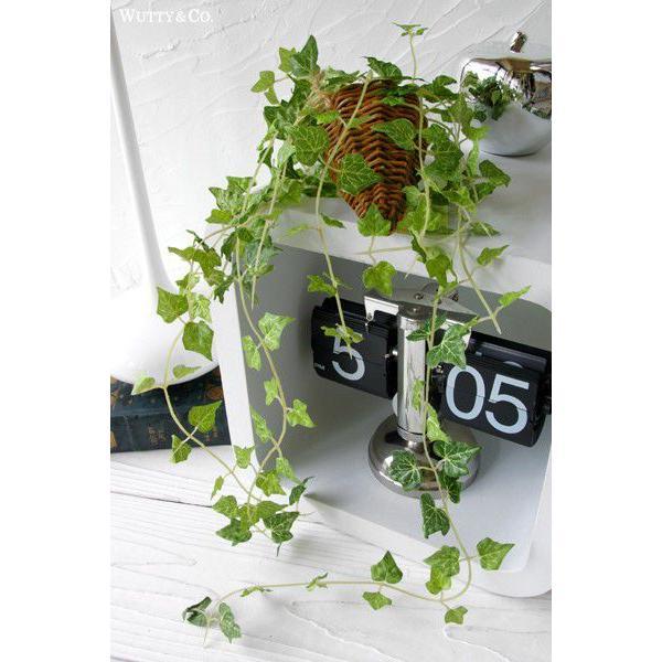 フェイクグリーン ハンギング アイビー 光触媒加工 ( 人工観葉植物 吊り下げ 壁飾り )|wutty|03