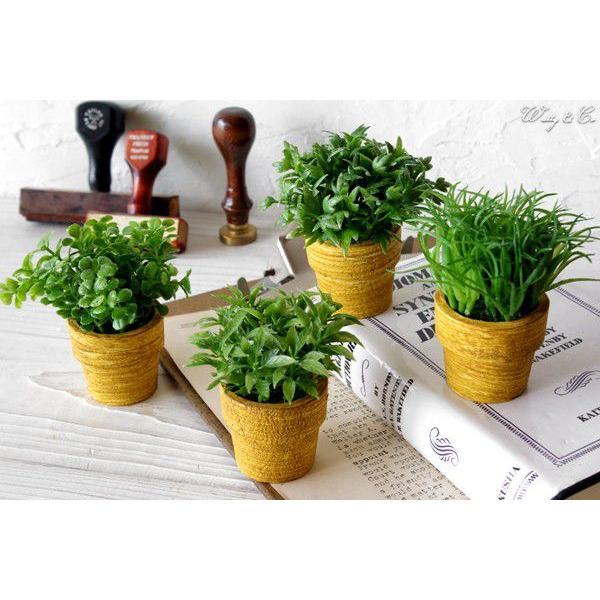 フェイクグリーン MiniGrassPot 4点セット (人工観葉植物)|wutty|03
