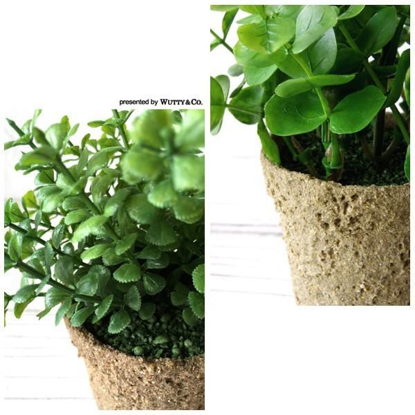 ミニフェイクグリーン 2点set KI ペーパー鉢 (人工観葉植物)|wutty|02