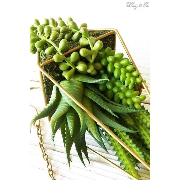 人工観葉植物 Succulent Wire Square L (B) ハンギング ( 多肉植物 フェイクグリーン 壁飾り 壁掛け ウォールグリーン )|wutty|03