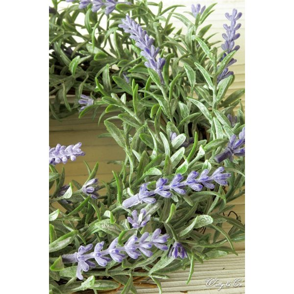 リース Lavender Wreath Ribbon ( ラベンダー 壁掛け 人工観葉植物 フェイクグリーン 壁飾り ハンギング )|wutty|02