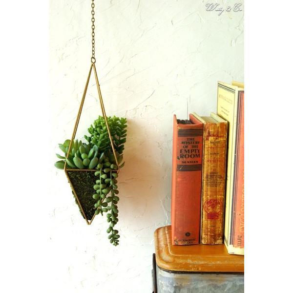 人工観葉植物 Succulent Wire Square L (A) ハンギング ( 多肉植物 フェイクグリーン 壁飾り 壁掛け ウォールグリーン )|wutty|05