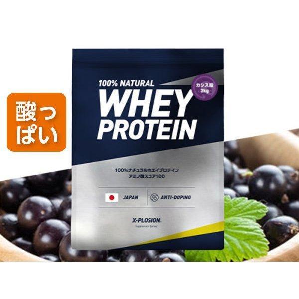 プロテイン エクスプロージョン 100%ホエイプロテイン カシス味 3kg 日本製 男性 女性 X-PLOSION x-plosion 04