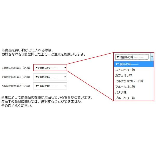 プロテイン エクスプロージョン 100%ホエイプロテイン 選べる3個セット 3kg 日本製 男性 女性 X-PLOSION|x-plosion|02