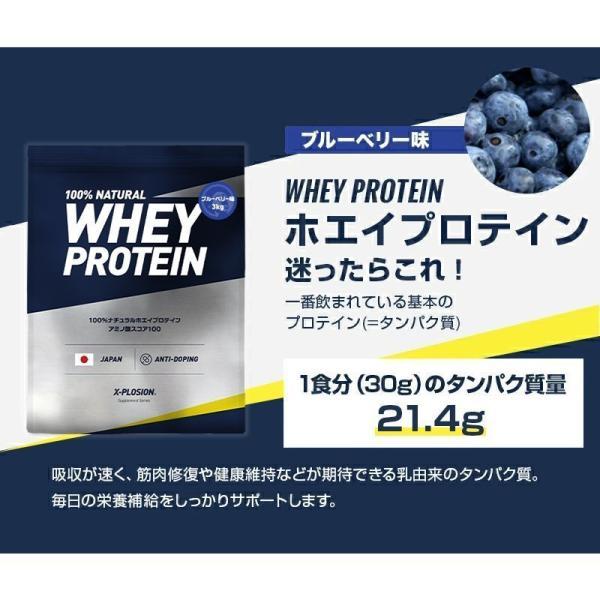 プロテイン エクスプロージョン 100%ホエイプロテイン ブルーベリー味 3kg 日本製 男性 女性 X-PLOSION x-plosion 03