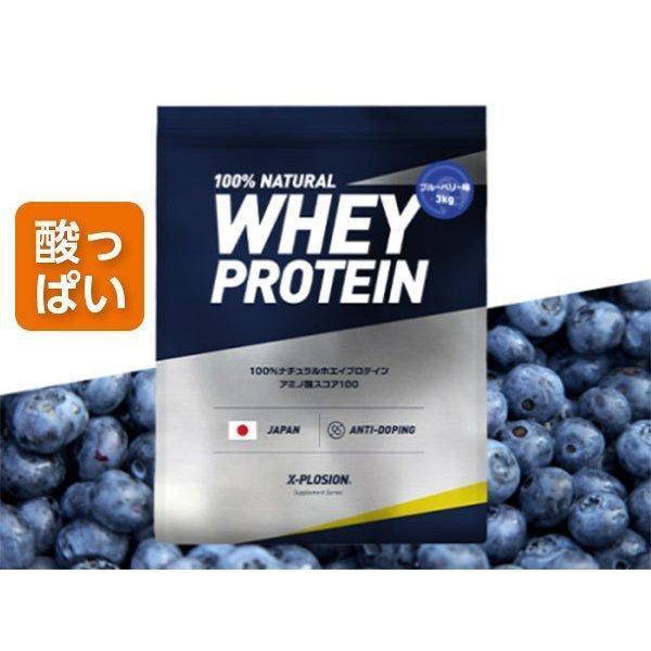 プロテイン エクスプロージョン 100%ホエイプロテイン ブルーベリー味 3kg 日本製 男性 女性 X-PLOSION x-plosion 04