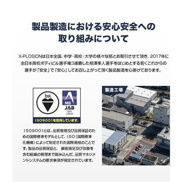 プロテイン エクスプロージョン 100%ホエイプロテイン ブラッドオレンジ味 300g お試し用 おためし 少量パック 日本製 男性 プロテイン 女性 X-PLOSION|x-plosion|05