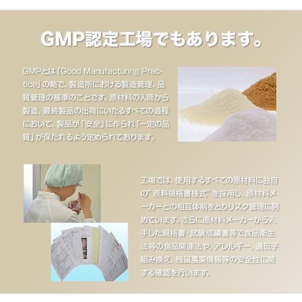 プロテイン エクスプロージョン ホエイプロテイン フランボワーズ味 300g お試し用 おためし 少量パック 日本製 男性 プロテイン 女性 X-PLOSION|x-plosion|06