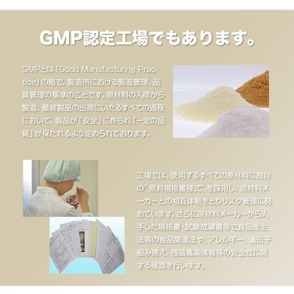 プロテイン エクスプロージョン 100%ホエイプロテイン プレーン味 3個セット 3kg×3個 合計9kg 日本製 男性 女性 X-PLOSION|x-plosion|07