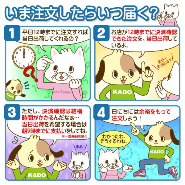 車椅子 自走式 スポーツ 車イス カドクラ KADOKURA ポセイドン A701 パープル|xenashopping|15