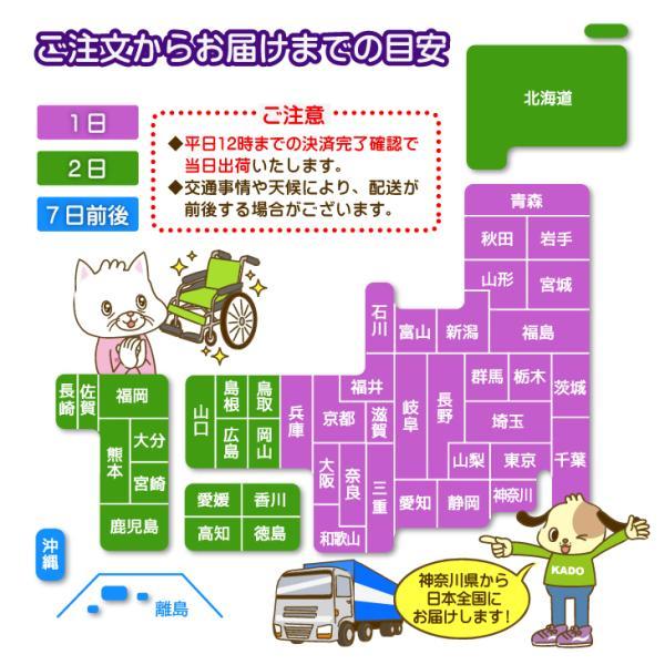 車椅子 全4色 簡易 車イス 介助用 介助式 送料無料 カドクラ KADOKURA カットビー レッド E101-AR|xenashopping|16