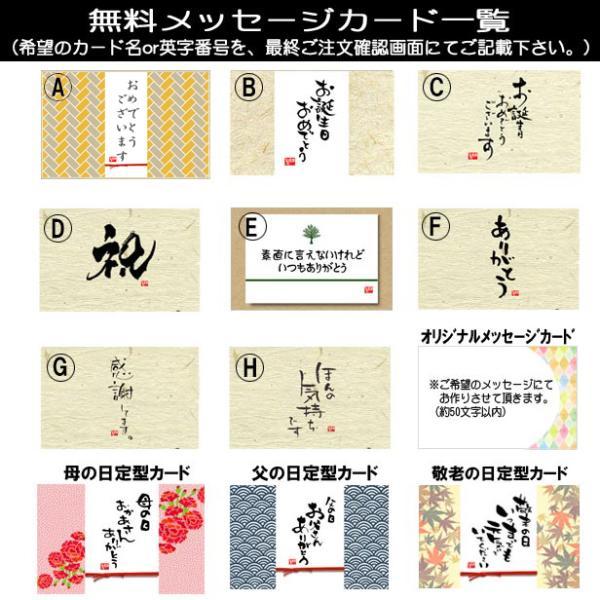 ミニ盆栽:五葉松(瀬戸焼小鉢)*祝い ギフト gift 誕生日祝 御祝 プレゼントにも y-bonsai 06