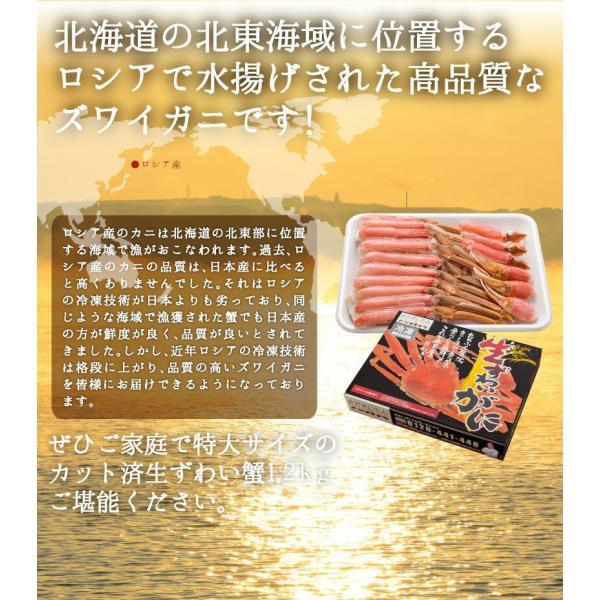 蟹 かに カニ カット済 生ずわい蟹1.2kg|y-kanazawamaimon|02