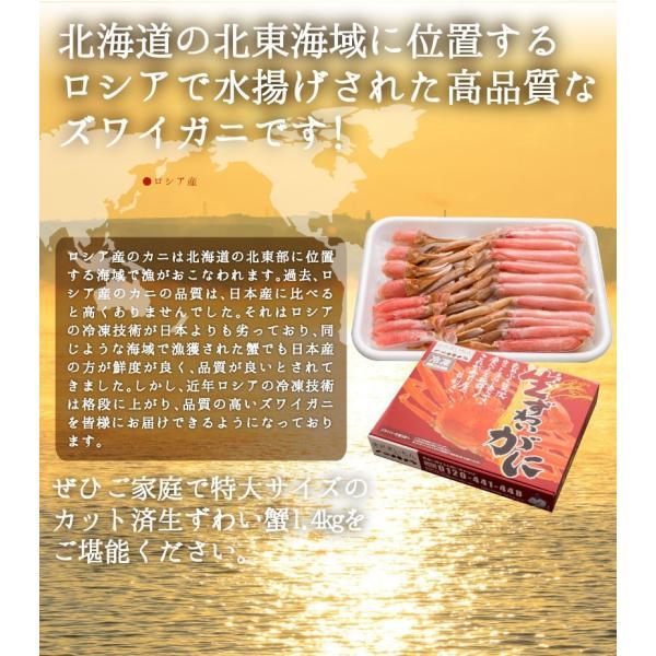 お中元 ギフト カニ 蟹 かに カット済 ずわい蟹 1.4kg (解凍後1.2kg)|y-kanazawamaimon|02
