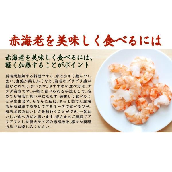 赤海老 えび エビ むき身 1kg(500g×2)|y-kanazawamaimon|04